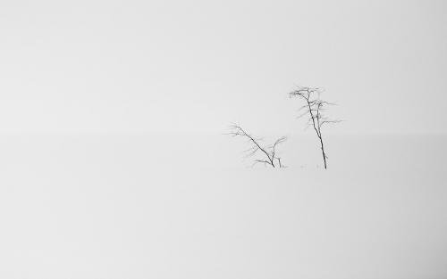 minimalism_0