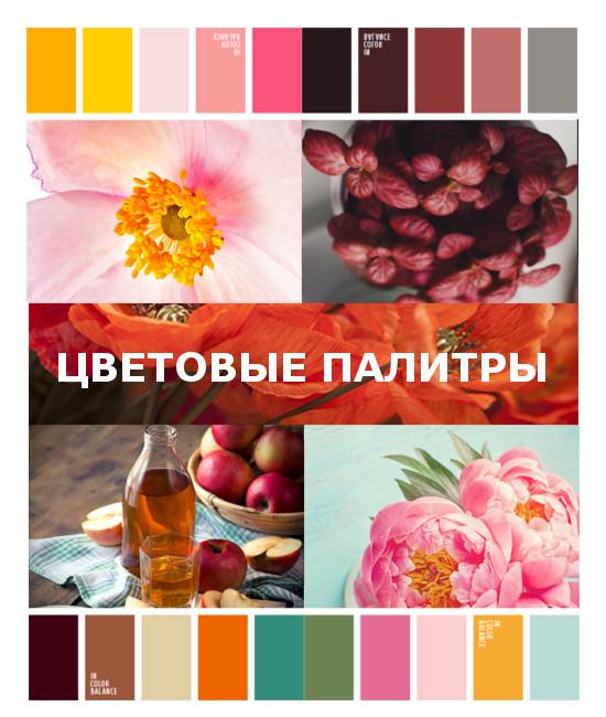 cvetovaya-palitra-0